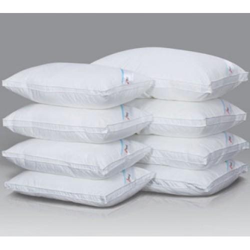 Pillow Doctor Standard