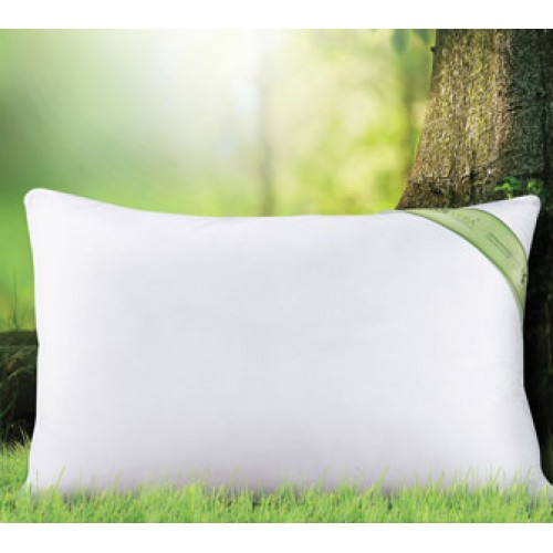 Pillow Aloe Vera President